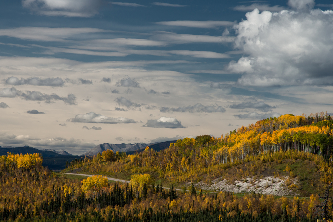 Alaska Highway With Fall Colors