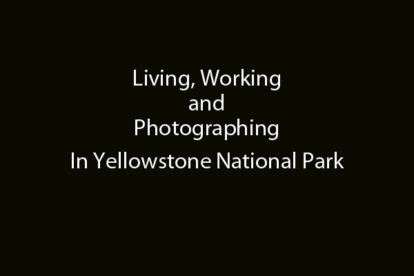 Living, Working & Photographing